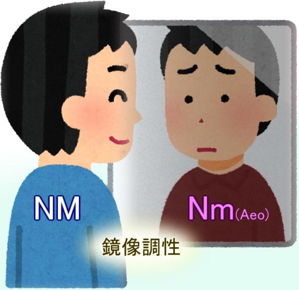 鏡像世界(NM/Nm)